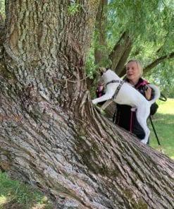 Hundträning på sommarläger i Skövde 2021