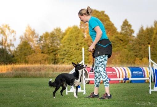 Agility, samspel mellan hund och människa