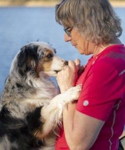 Kärleken mellan hund och människa är speciell